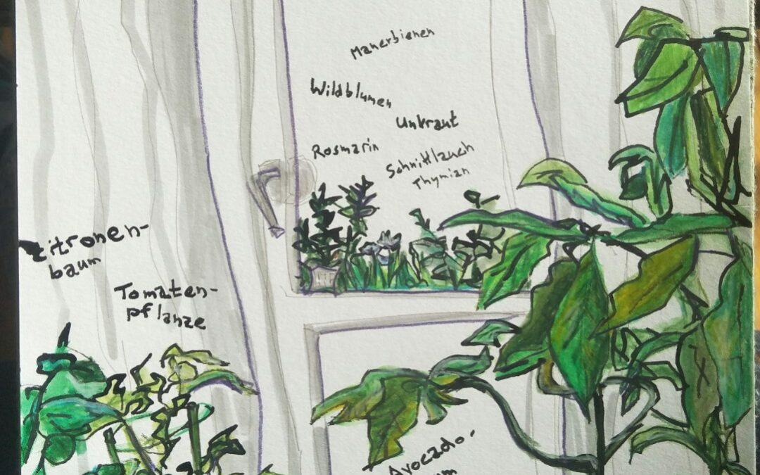 Haustierpflanze