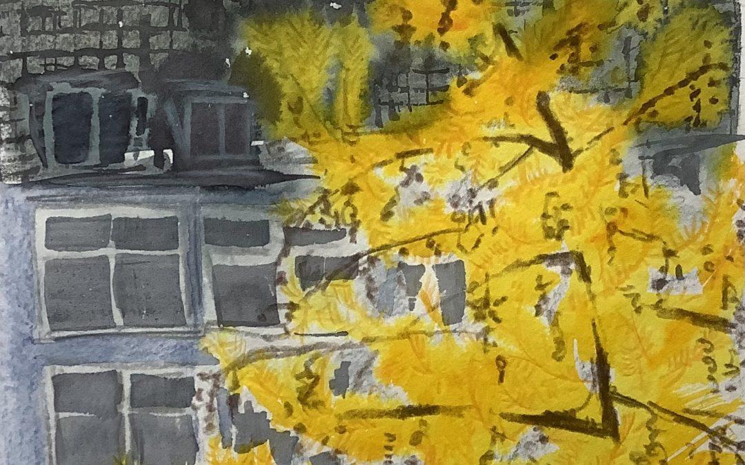 Herbstlicher Blick aus dem Fenster